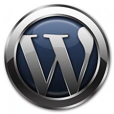 wordpress-brute-force-atttacks